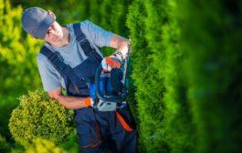 Milyen szerszámokra van szükségünk a kertben?
