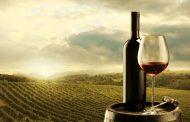 Imádják a szőlősgazdák a borászati webáruházakat